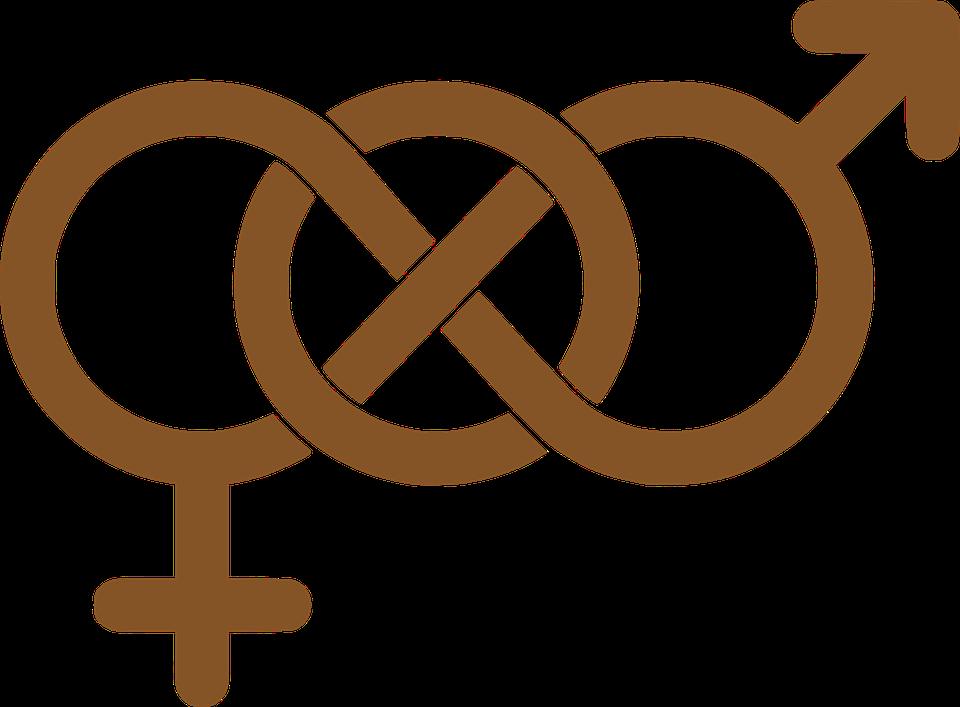 Jämlikhet och varannan damernas